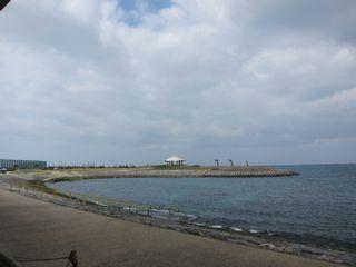 14/01/19 風が吹いたら穏やかなところへ 波の上