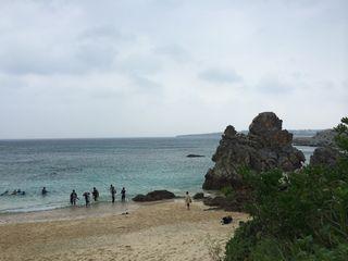 14/10/04 北風に強い守護神 ゴリラチョップ