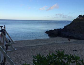 15/11/18 この時期に連日の30度越えです。 沖縄本島