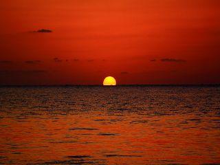 19/05/29 7月限定!!到着後2ボート&ナイトボートダイビング!! 沖縄本島