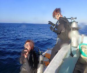 201116 dive.jpg