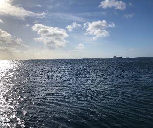 20/11/17 探せば必ずオアシスはある。 沖縄本島