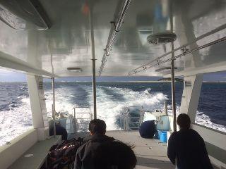 17/01/15 海に入ると暖かい季節になってきました。 チービシ