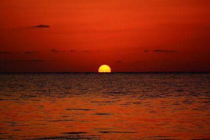 21/03/12 いつかこんな日がくるかとは思っていました。 沖縄本島ホエールスイム